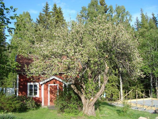 Enkel charmig stuga i Bergslagen - Lindesberg N - Kabin
