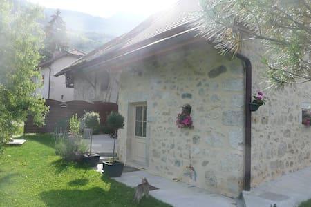 jolie maison en pierre rénovée - Jongieux - Дом
