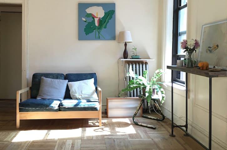 Sunny and Spacious 1bd near Prospect Park - Brooklyn - Apartment