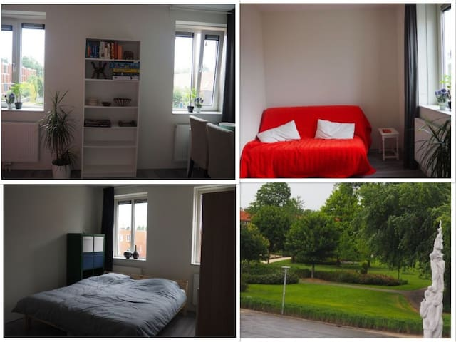 Spacious bed- and living room close to city centre