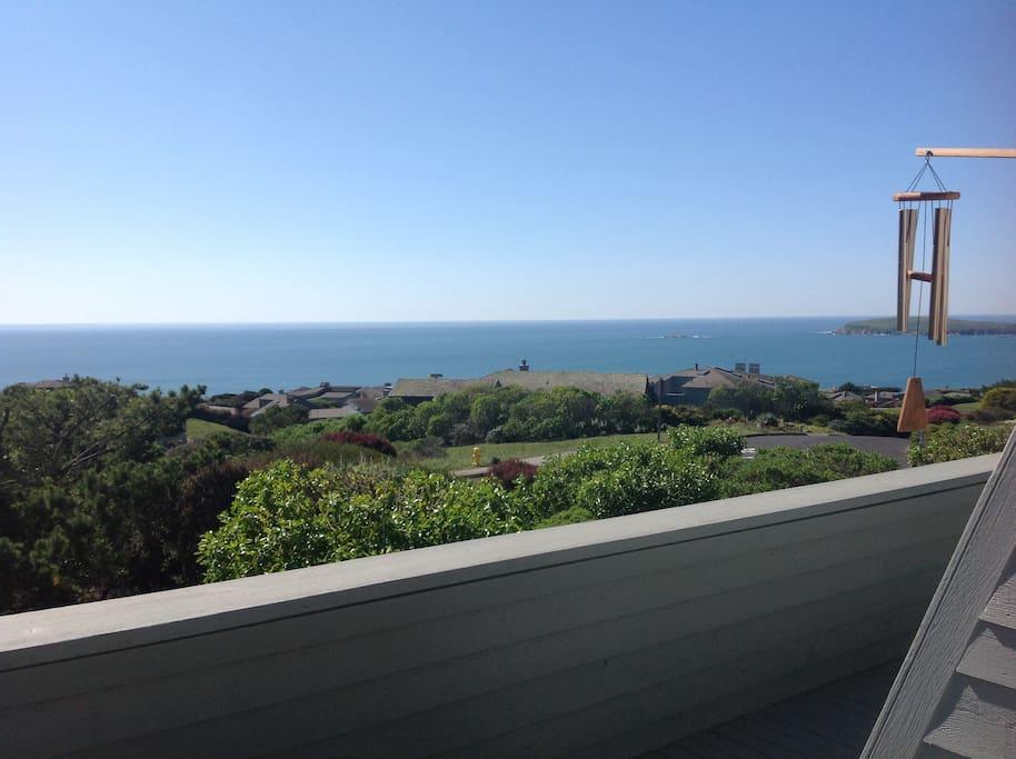 View from balcony towards Bodega Head