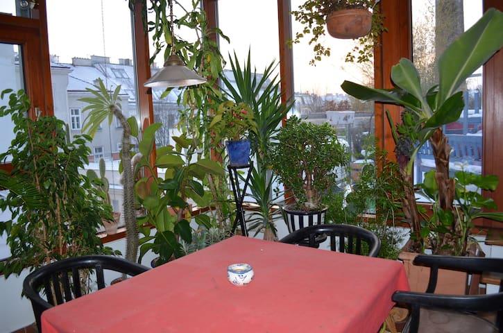 Appart. en terrasse au centre-ville