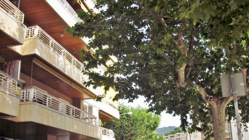 Bonito piso con piscina y Pk. - Sant Andreu de Llavaneres - Apartamento