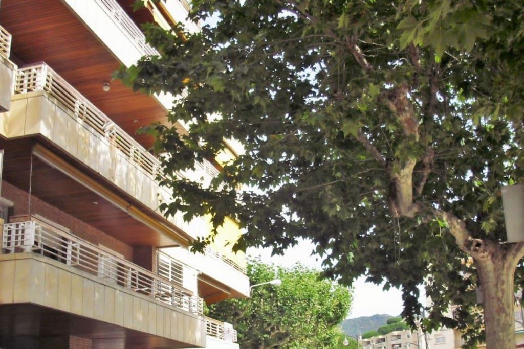 Bonito piso con piscina y pk flats for rent in sant for Piscina sant andreu