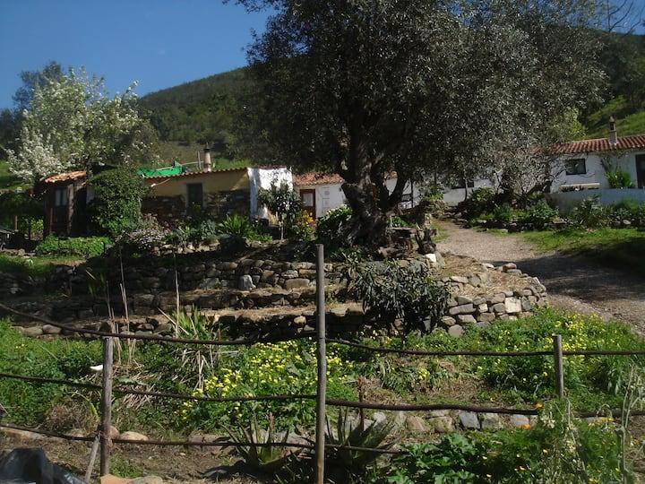 Natural paradise,  Aljezur,  west Algarve