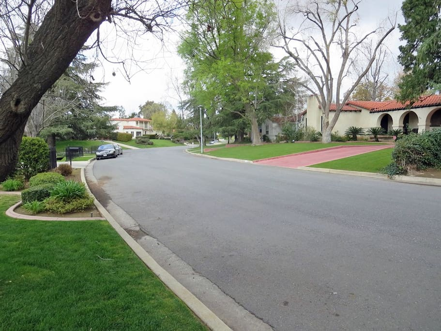View of the neighborhood from the front yard.