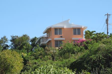 Casa Alejada-Buena Vista Apartment - Guanica