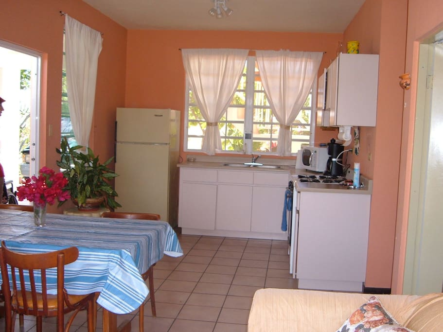 Our kitchen, fully equipped, just bring food.