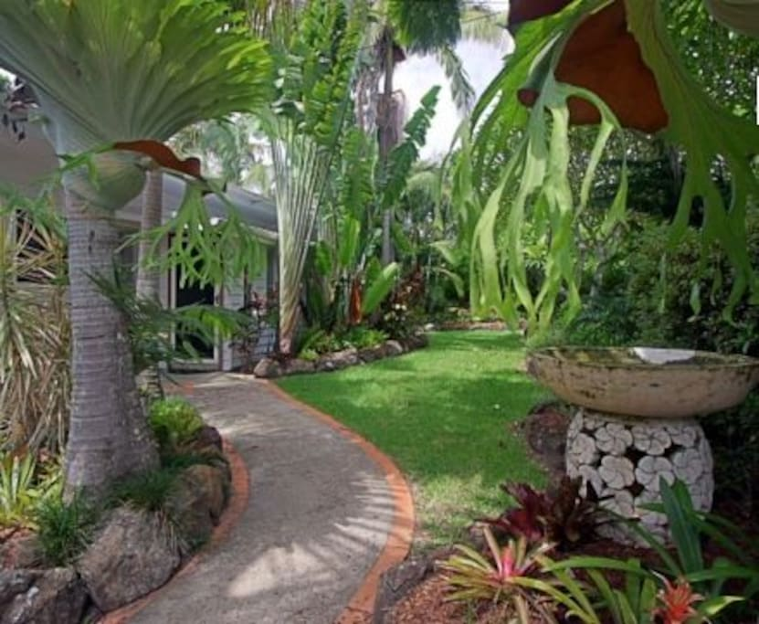 Beautiful Tropical Gardens
