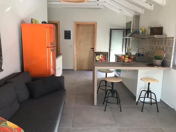 Toni's apartment