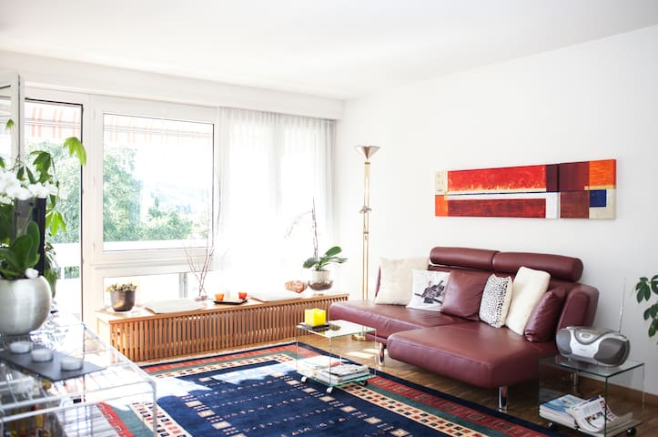 Quiet apartment with lake view. - Horgen
