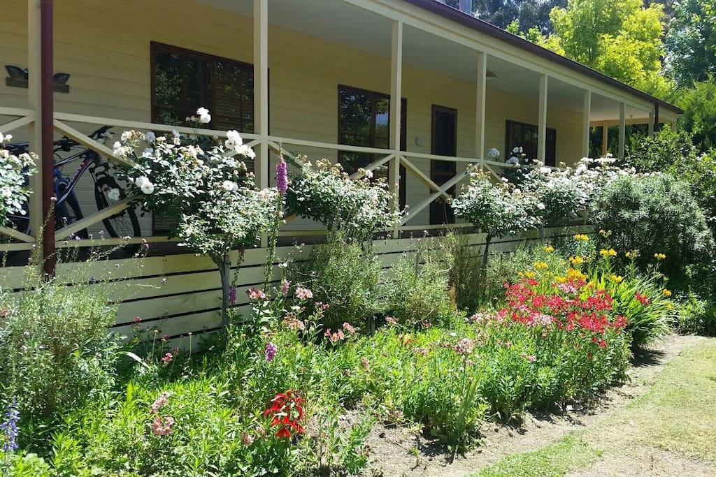 Front aspect & rose garden
