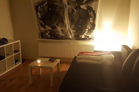 Room in Lodz Center for short rent - Łódź - 아파트