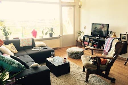 cosy appartement - Nijmegen