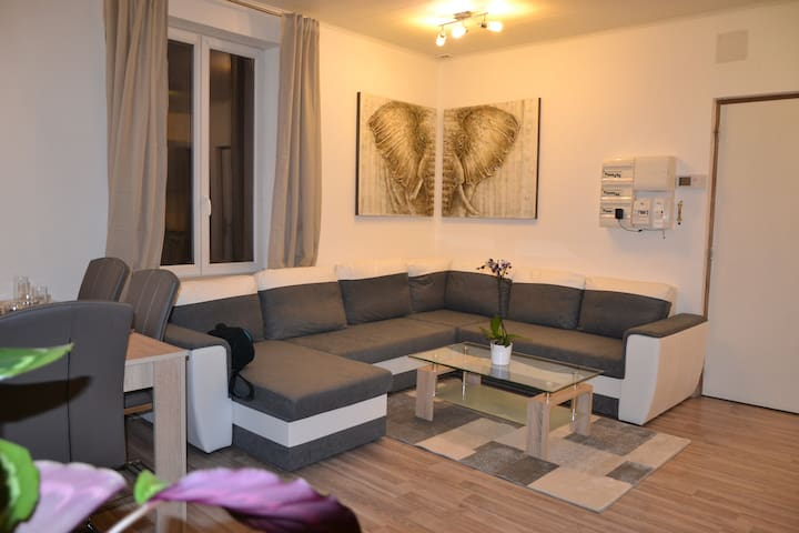 F2 tout confort - Mommenheim - Apartment