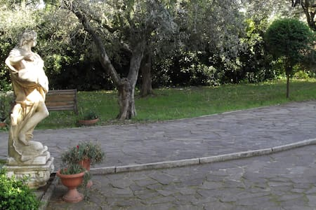 Charming and quiet house close rome