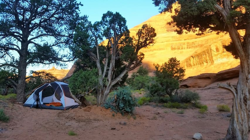 Moab Tent