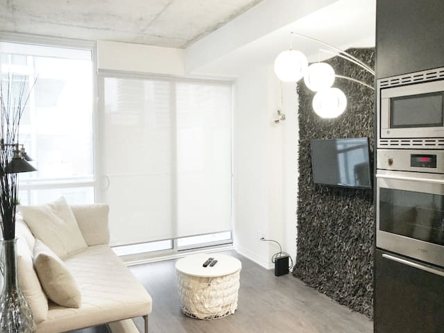One Bedroom Luxury Condo In The Heart Of Toronto!