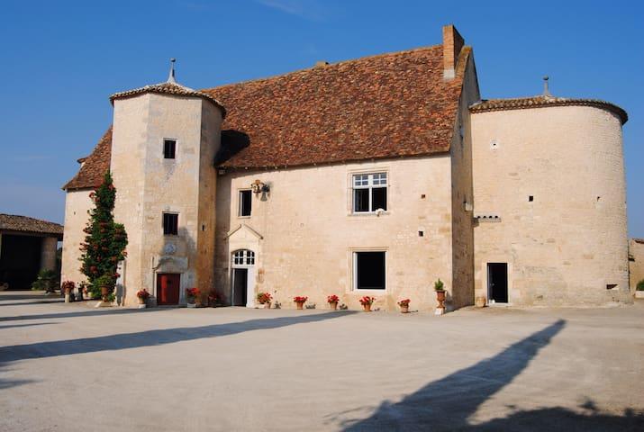 Chambre dans manoir historique  - Montignac charente - Castillo