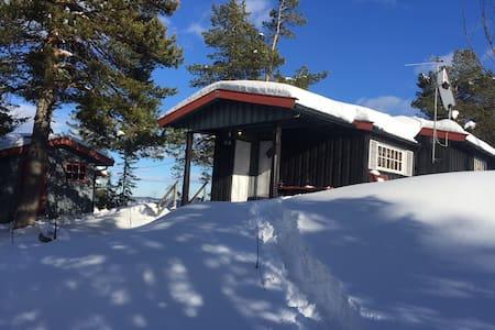 Usjenert hytte på Skrim - Passebekk - Mökki
