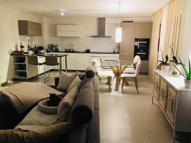 Belle chambre à louer dans spacieux logement