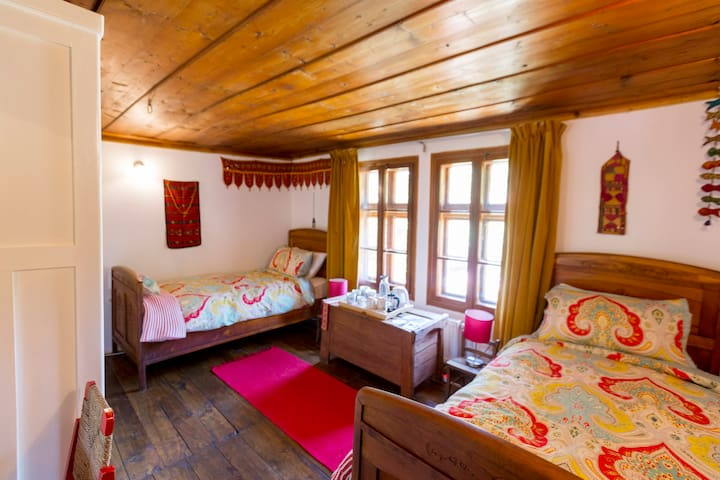 Bright twin room with view and private shower room