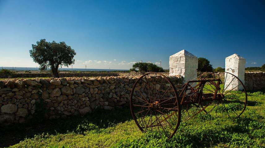 Masseria La Scalella- Casa Le Corti - Manduria - Ev