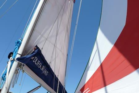 Live an adventure on a sailing boat - Ancona