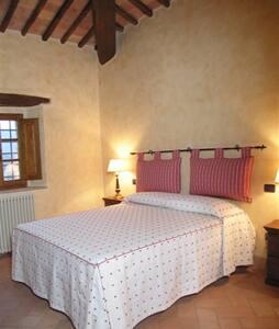Le Vigne - 109390 - Montalcino