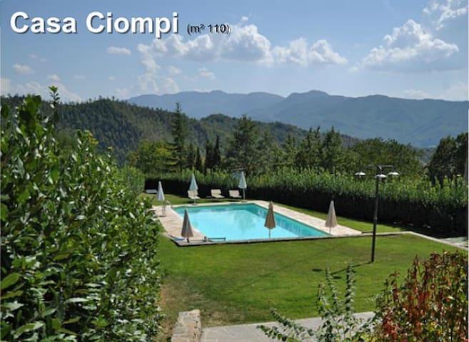Tuscany Rural House (Casa Mario)