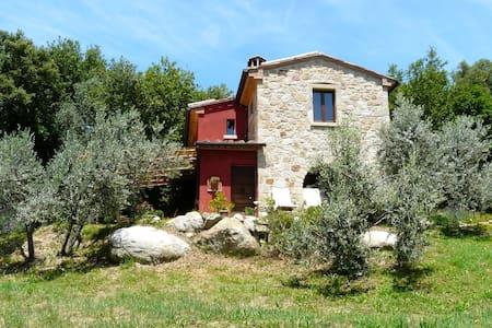 Romantische Ferien im Olivenhain - Sassofortino - Hus