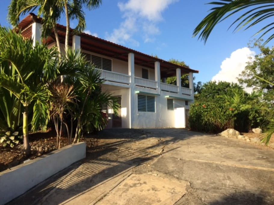 The apartment is located on the ground level surrounded by a garden and tropical fruit trees.