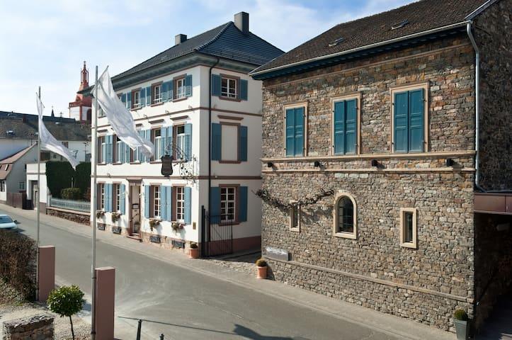 Ferienwohnung im Weingut - Münster-Sarmsheim - Apartment