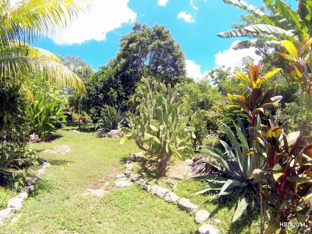 Romantic Casa Maya - quiet property - Izamal - Casa