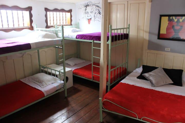 B&B Eureka: Dormitorio. cama sencilla. bed dorm