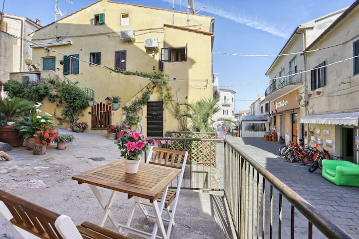Romantic Apartment In Historic Centre with Patio and Short Drive From Beach; Pets Allowed