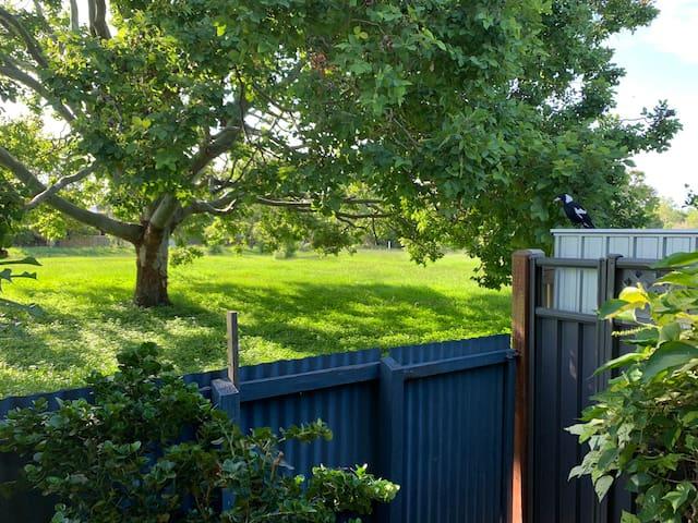 Paperbark Garden Bungalow