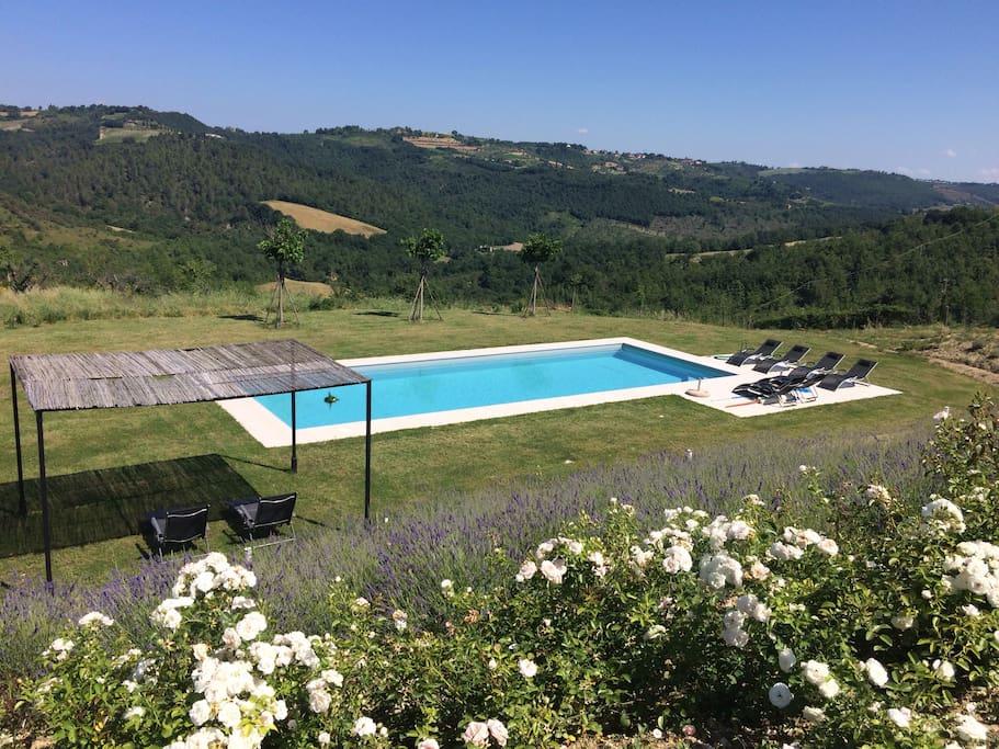 piscine 13x5 m / jardin inférieur orienté au soleil couchant