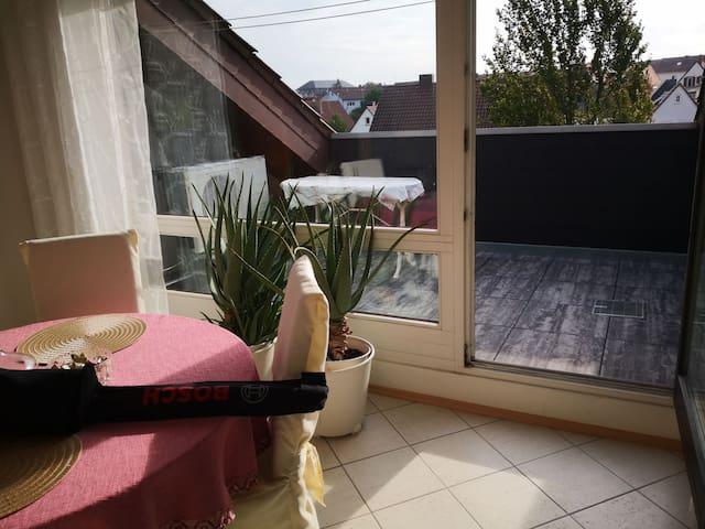 Wachenheim a.d.Weinstr. klimatisierte Dachwohnung