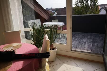 Bad Dürkheim klimatisierte Dachwohnung