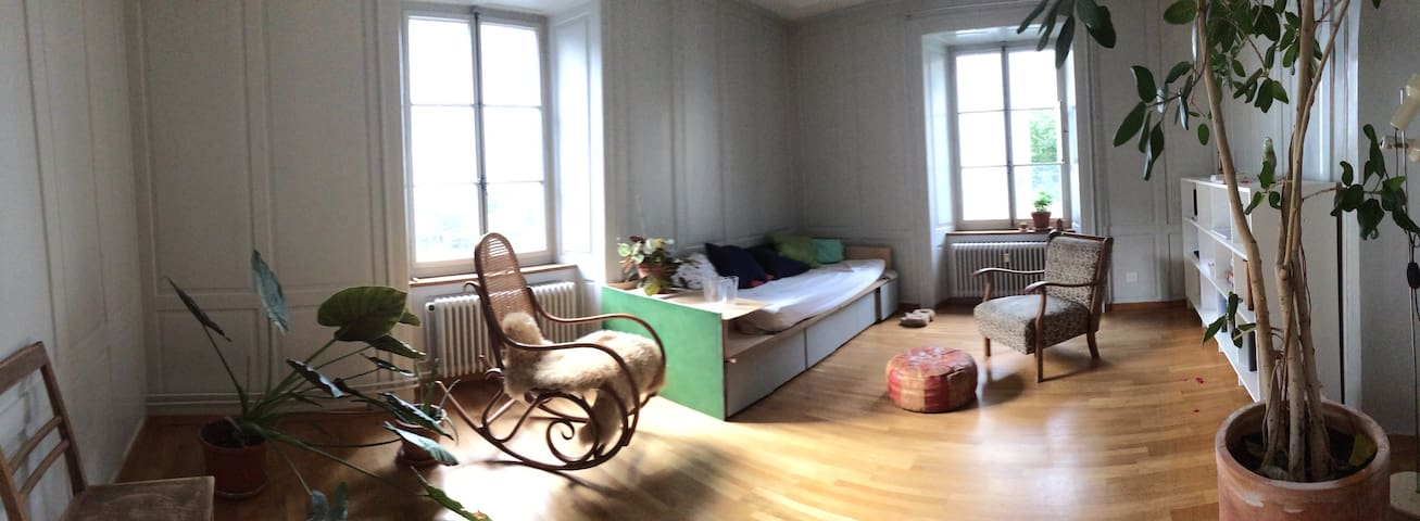 Charming Room in Chur Old Town - Chur - Apartment