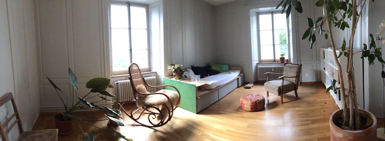 Charming Room in Chur Old Town - Chur - Wohnung