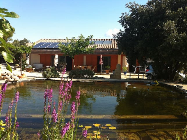 B&B dans villa bioclimatique - Saint-Bonnet-du-Gard - Bed & Breakfast