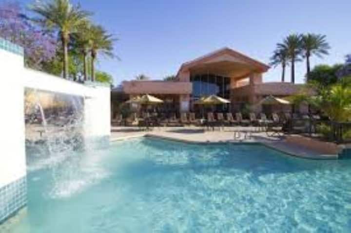POOLS! PALMS! PARADISE! 2BD for 8! KITCHEN/HOT TUB