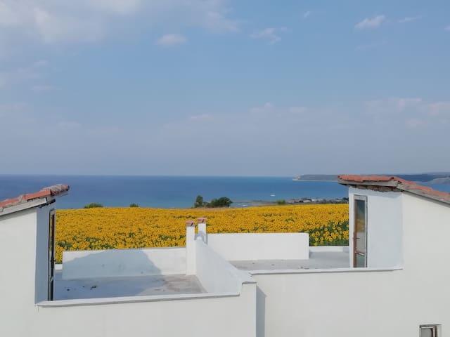 Saroz Körfez Manzaralı Doğa'nın içinde Villa