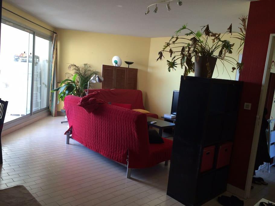 salon avec tv, internet, 2 canapés lit convertibles, coin salle à manger