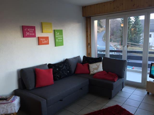 charmante 2-Zimmer-Wohnung in Nendaz - Siviez - อพาร์ทเมนท์