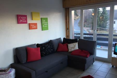 charmante 2-Zimmer-Wohnung in Nendaz - Siviez - Appartement