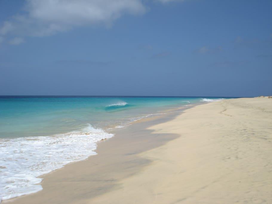 Lekker kuieren met je geliefde langs zonovergoten stranden