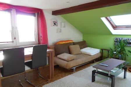 FeWo- Fantasie 74743 Seckach - Seckach-Großeicholzheim - Apartamento